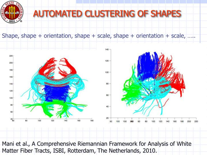 AUTOMATED CLUSTERING OF SHAPES