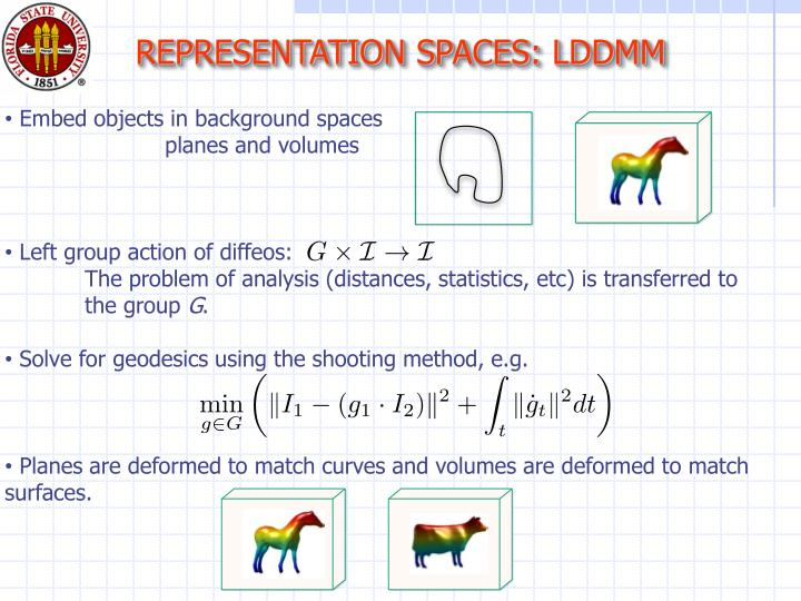 REPRESENTATION SPACES: LDDMM