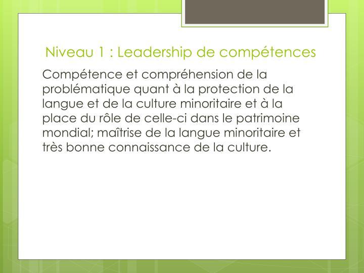 Niveau 1 : Leadership de compétences
