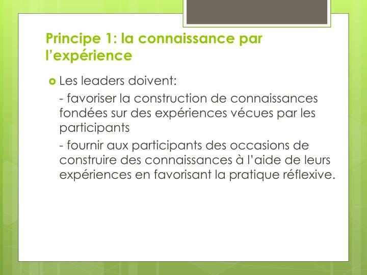 Principe 1: la connaissance par l'expérience