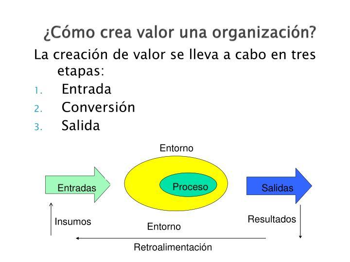 ¿Cómo crea valor una organización?