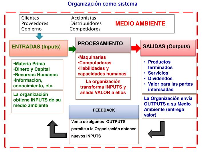 Organización como sistema
