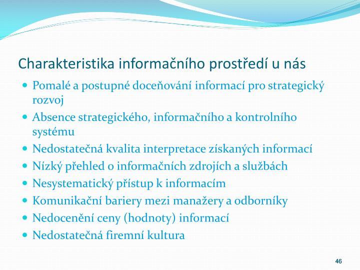 Charakteristika informačního prostředí u nás