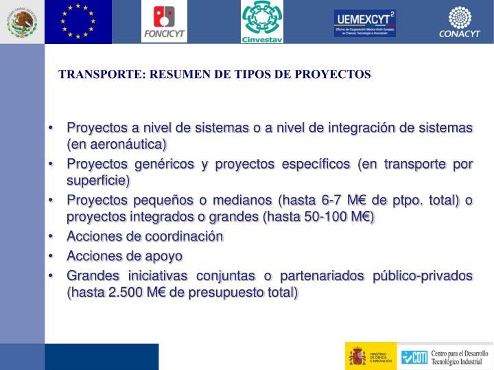 TRANSPORTE: RESUMEN DE TIPOS DE PROYECTOS