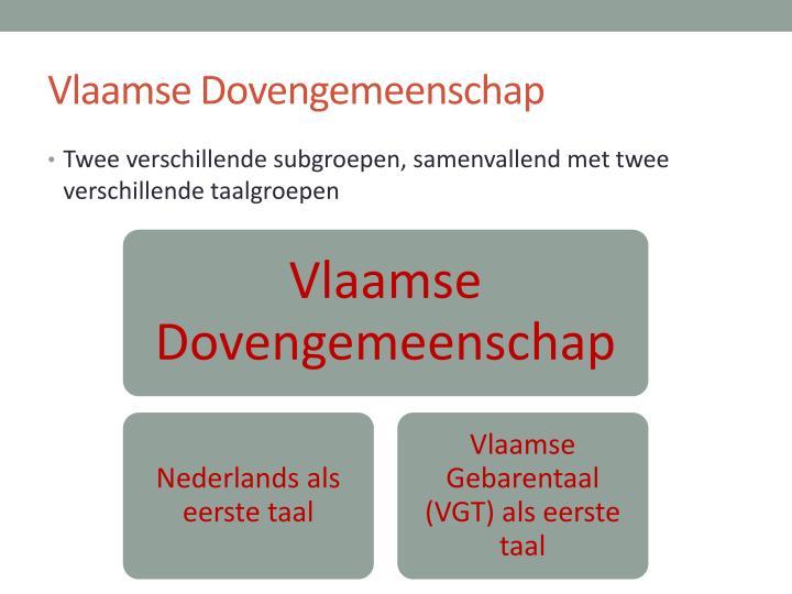 Vlaamse Dovengemeenschap
