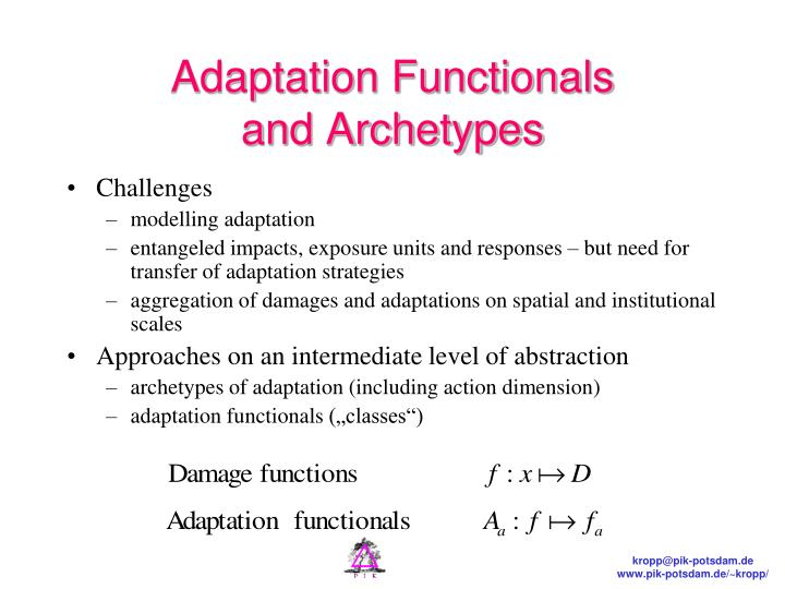 Adaptation Functionals