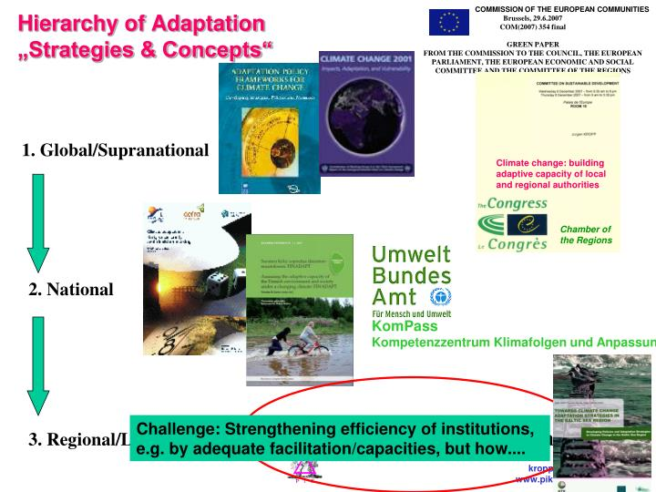 Hierarchy of adaptation strategies concepts