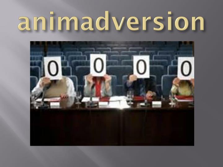 animadversion