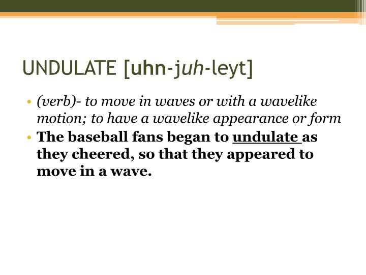 UNDULATE [