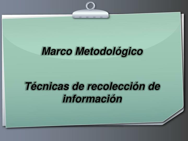 Marco Metodolgico