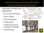 1a build upon existing community capacity to promote resilience