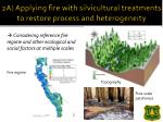2a applying fire with silvicultural treatments to restore process and heterogeneity