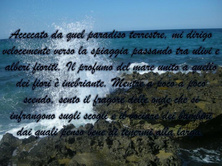 Accecato da quel paradiso terrestre, mi dirigo velocemente verso la spiaggia passando tra ulivi e alberi fioriti. Il profumo del mare unito a quello dei fiori è inebriante. Mentre a poco a poco scendo, sento il fragore delle onde che si infrangono sugli scogli e il vociare dei bambini dai quali penso bene di tenermi alla larga.