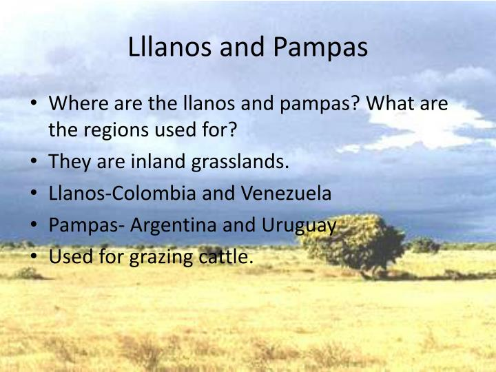 Lllanos and Pampas