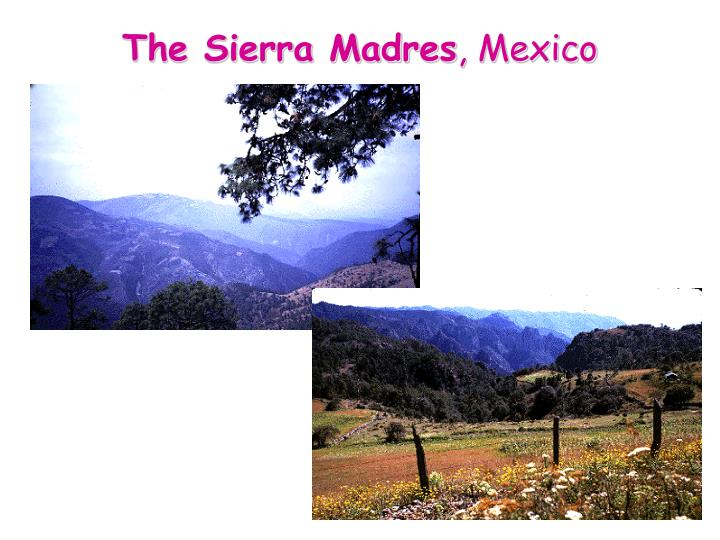 The Sierra Madres