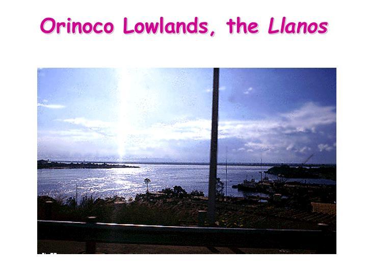 Orinoco Lowlands, the