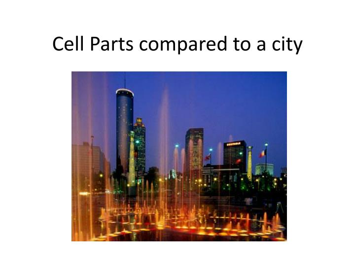 Cell parts compared to a city