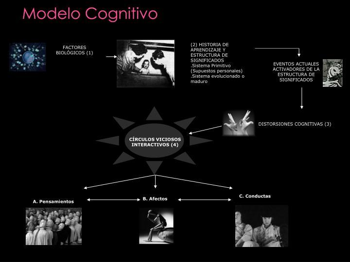 (2) HISTORIA DE APRENDIZAJE Y ESTRUCTURA DE SIGNIFICADOS
