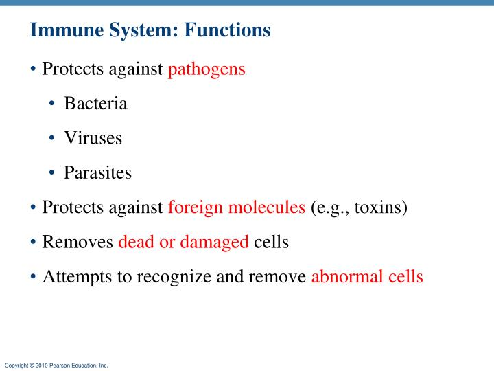 Immune System: Functions