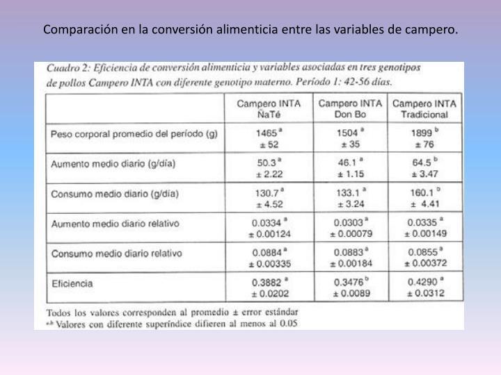 Comparación en la conversión alimenticia entre las variables de campero.