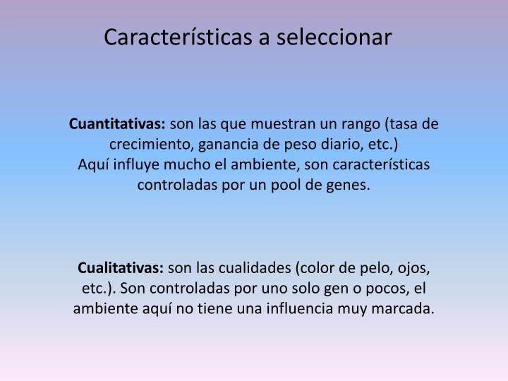 Características a seleccionar