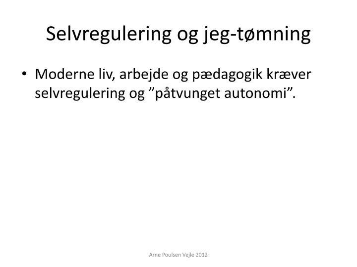 Selvregulering og
