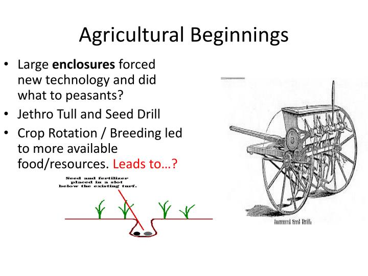Agricultural Beginnings