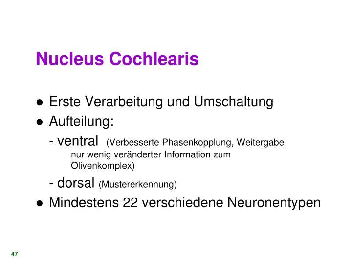 Nucleus Cochlearis