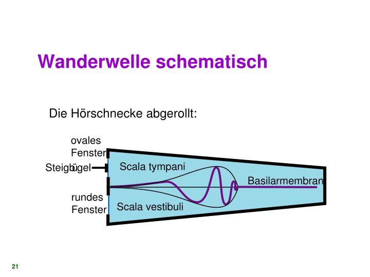 Wanderwelle schematisch