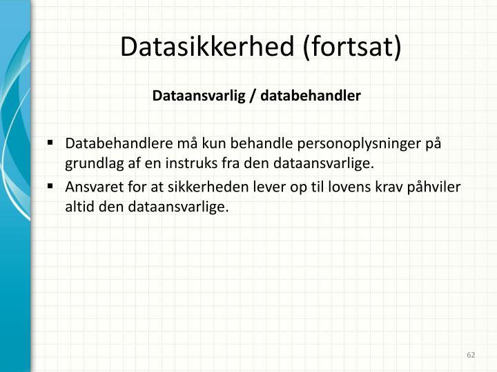 Datasikkerhed (fortsat)