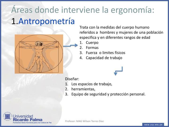 Áreas donde interviene la ergonomía: