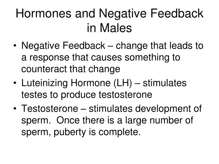 Hormones and Negative Feedback in Males