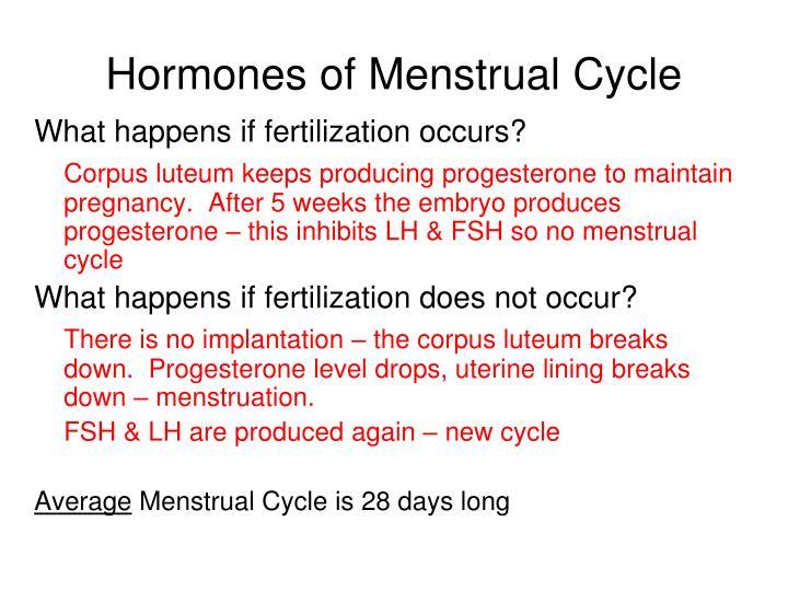 Hormones of Menstrual Cycle