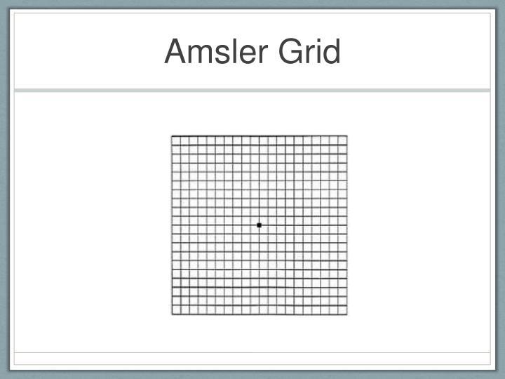 Amsler