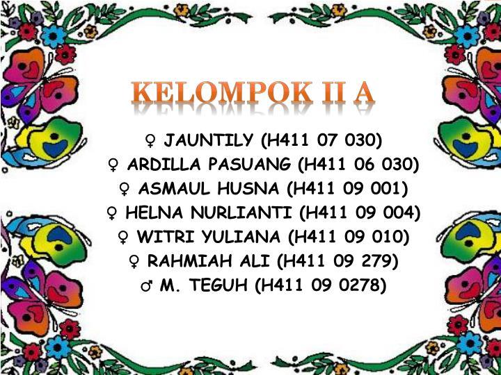 KELOMPOK II A