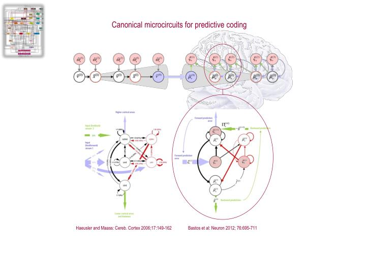Canonical microcircuits for predictive coding