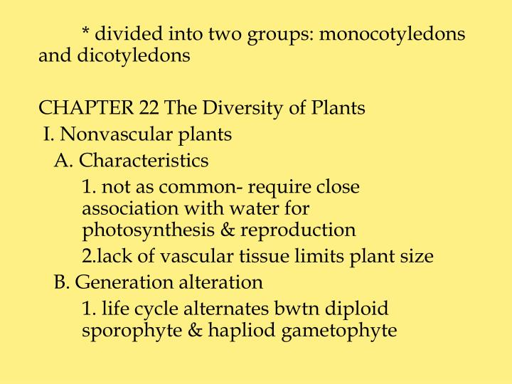 * divided into two groups: monocotyledons and