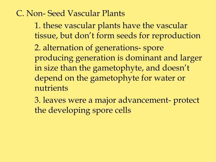 C. Non- Seed Vascular Plants