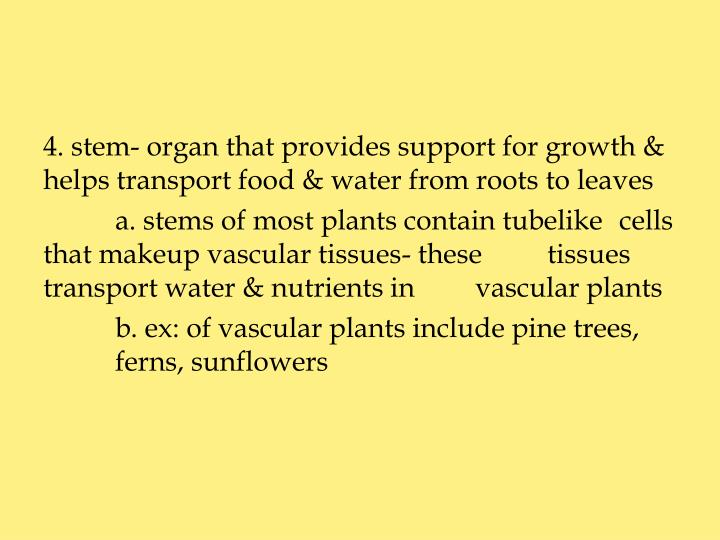 4. stem- organ that provides support for growth & helps transport food & water from roots to leaves