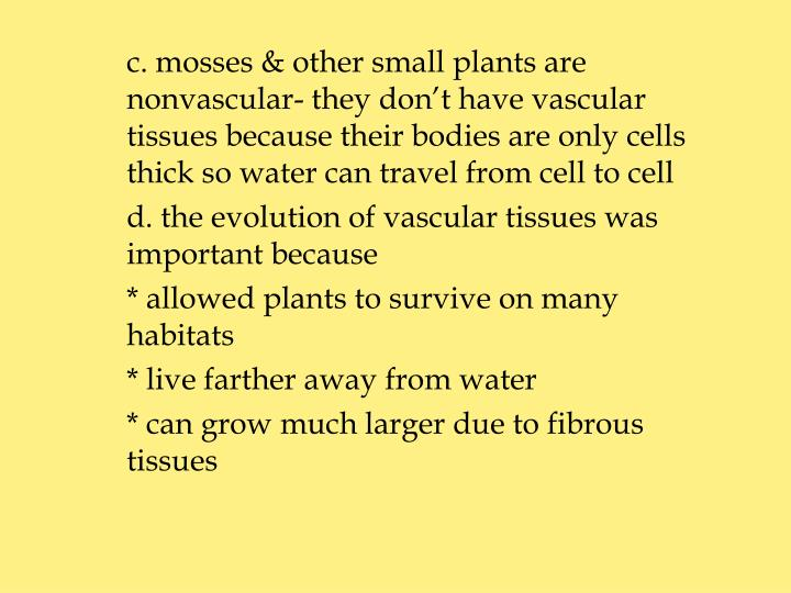 c. mosses & other small plants are 	nonvascular- they don't have vascular 	tissues because their bodies are only cells 	thick so water can travel from cell to cell