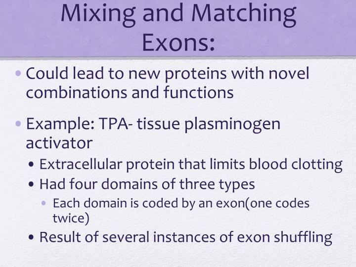 Mixing and Matching Exons: