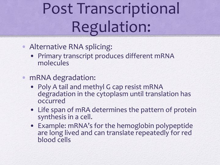Post Transcriptional Regulation:
