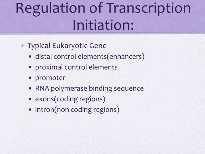 Regulation of Transcription Initiation: