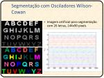 segmenta o com osciladores wilson cowan2
