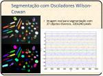 segmenta o com osciladores wilson cowan3