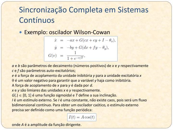 Sincronização Completa em Sistemas Contínuos
