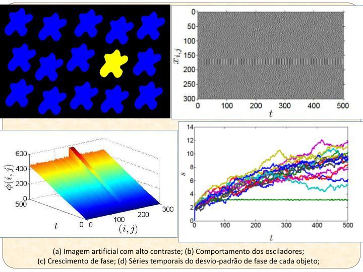 (a) Imagem artificial com alto contraste; (b) Comportamento dos osciladores;
