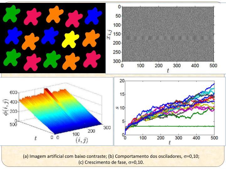 (a) Imagem artificial com baixo contraste; (b) Comportamento dos osciladores,