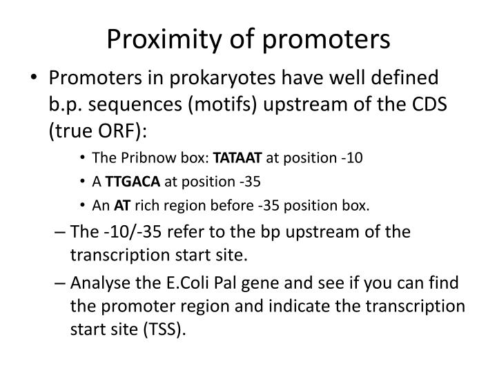 Proximity of promoters