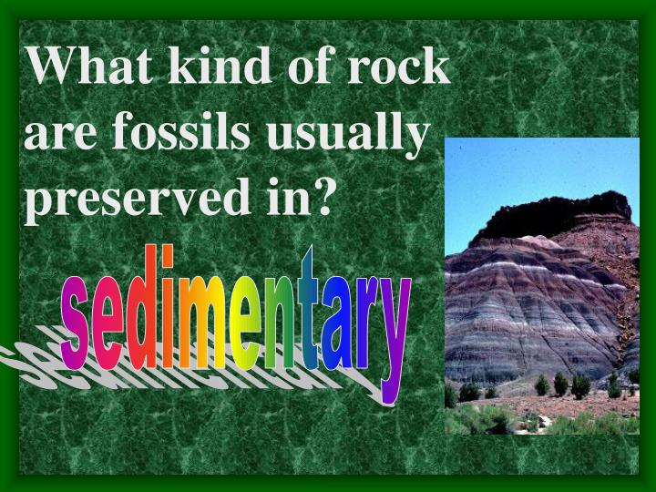 What kind of rock are fossils usually preserved in?